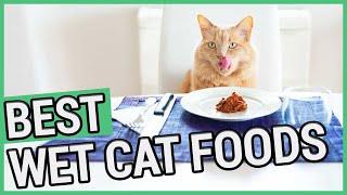 Best Wet Cat Food | 5 Best Canned Cat Foods 2020 🐱 ✅