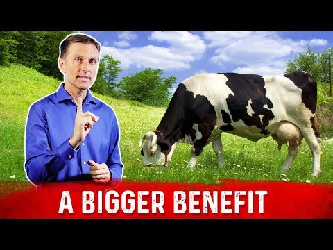 Grass Fed Products Goes Beyond Just Omega 3 Fatty Acids