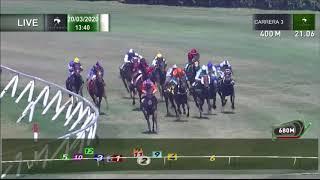 Vidéo de la course PMU PREMIO FUNNY JOKE