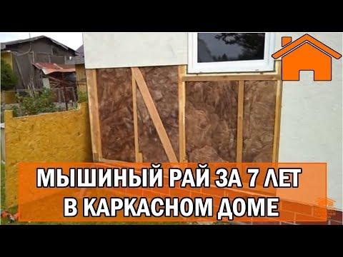 видео: kd.i: Мышиный рай за 7лет в каркасном доме. Слабонервным не смотреть.