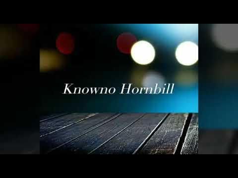 Knowno -Never Be Replaced (Lyrics Video)