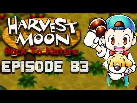 More Chicken Feed! | Harvest Moon | Back to Nature EP.83