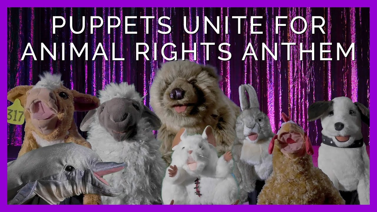 Puppets Take the Mic in Animal Rights Anthem
