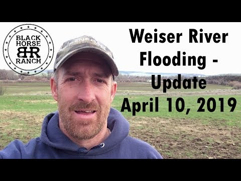 Weiser River Flooding 2019 - Midvale, ID update
