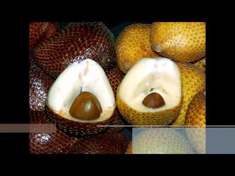 Türkiye de Yetişen 10 Tropikal Meyve
