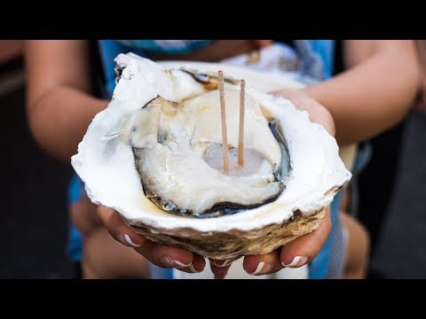 Japanese Street Food - GIANT OYSTER and Seafood Tour of Tsukiji Market in Tokyo, Japan!