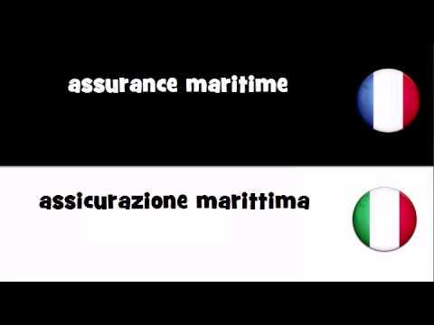 VOCABULAIRE EN 20 LANGUES = assurance maritime