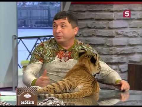 Вопрос: Тигролев. Каково его происхождение?