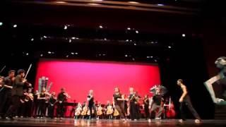 Ren Arts Malagueña Finale 2013