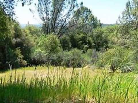 Homes for Sale - Italian Creek Mariposa CA 95338 - Judy Hardaway