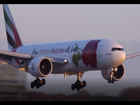 Windy Landings @ Schiphol l Go Around AM B787 l Emirates SkyCargo Rosie with Love Livery l HD 2017