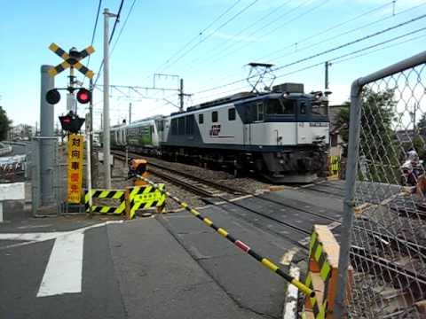 Resort Hybrid Train (JR南武線西国立駅付近、青柳踏切にて)