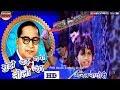 Mujhe Chad Gaya Neela Rang Rang Jai Bhim Song Dj Akash