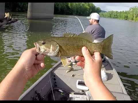 Summer Small Mouths On The Shenandoah River