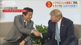 """""""余ったトウモロコシが全部売れたぞ""""その真相は?(19/08/27)"""