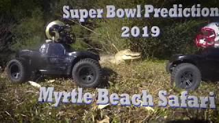 Ishta the Tiger Predicts Super Bowl 53 - 2019 @ Myrtle Beach Safari