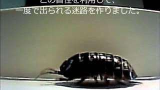 特撮15SECONDSコンテストお手本動画05