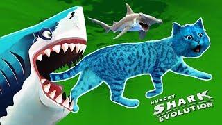 ГИГАНТСКАЯ АКУЛА МЕГАЛОДОН ЕСТ ВСЕХ ПОДРЯД / СИМУЛЯТОР АКУЛЫ / Hungry Shark Evolution / КОТЁНОК ЛАЙК