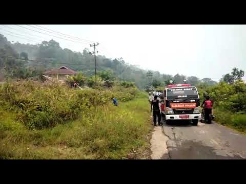 Kesigapan Tim Damkar Pasbar Dalam Mengatasi Kebakaran