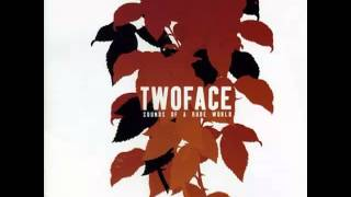 Watch Twoface Image Of The World video