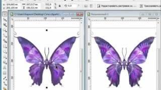Corel Draw X5 (для начинающих)Обзор программы.