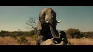 The most funny Brothers Grimsby 2016 FR  Elephant scene