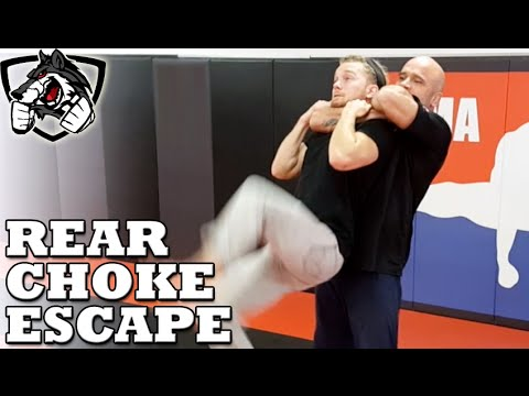 Clint August - For Relatives Visiting. How to Escape a Standing Rear Choke w/ Bas Rutten