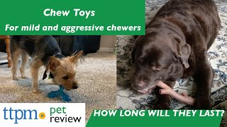 Testing Chew Toys for Dogs That Are Aggressive Chewers | How long will they last?