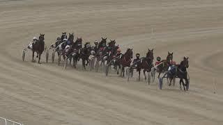 Vidéo de la course PMU PREMI MAIRENA