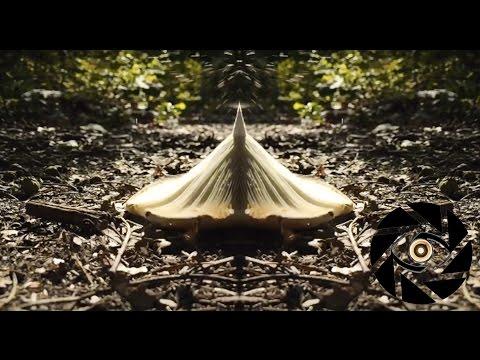 Smilk - Photosynthesis [Music Video]