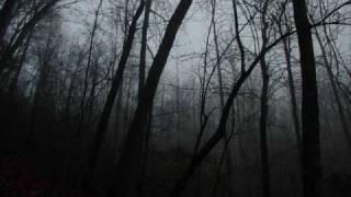 Beautiful Sad Music: Figlio Perduto