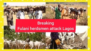 BREAKING: FULANI HERDSMEN AT IT AGAIN AS THEY ∆TT∆¢K LAGOS RESIDENTS, SEE WHAT THEY'RE DOING
