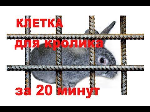 Клетку для кролика своими руками