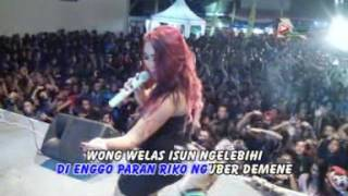 Ojo Nguber Welas - Dwie Musik - DWI RETNO - Banyuwangi 2016