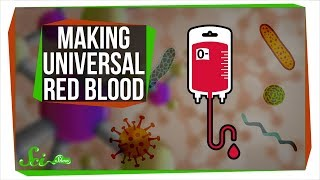 New Bacterial Enzymes Could Revolutionize Blood Donations | SciShow News