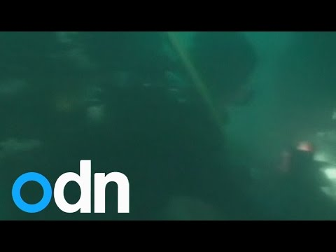 Underwater footage: Divers search wreckage of AirAsia jet's tail for black boxes
