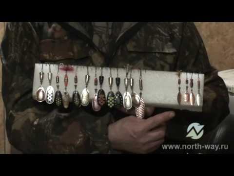 приманки и снасти для ловли сига