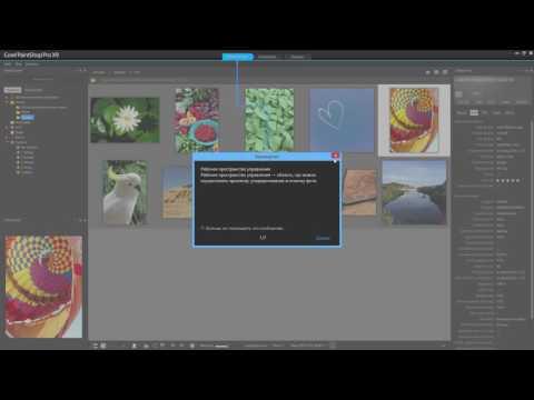 Новые функции фоторедактора Corel PaintShop Pro X9