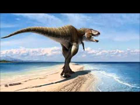 Tribute to Tyrannosaurids