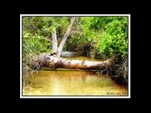 parque-natural-de-las-sierras-de-cazorla,-segura-y-las-villas:-lugares-(2-de-2)
