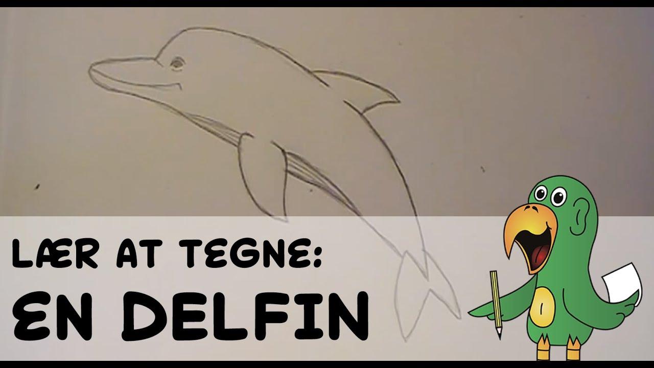 delfiner i danmark 2016