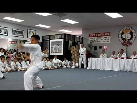 Tae Kwon-Do White Belt Test