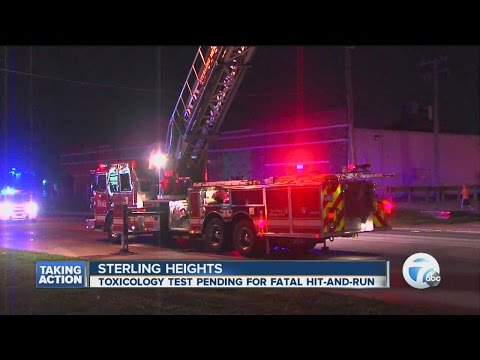 Drug tests being done in fatal hit and run in Sterling Heights
