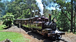 Steam In the Mount Dandenongs, Puffing Billy Railway