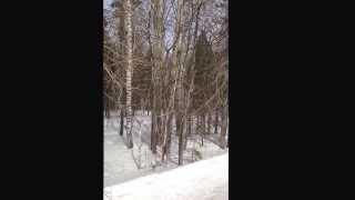 Продам дом у леса 14 км от Екатеринбурга. (343) 328-80-12(через YouTube Объектив., 2014-03-10T19:08:58.000Z)