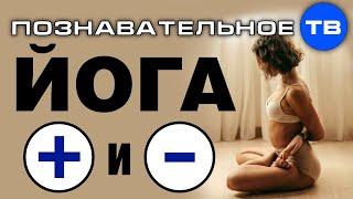 Йога. Плюсы и минусы (Познавательное ТВ, Екатерина Евдокимова)