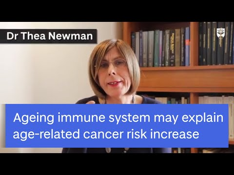 Ageing immune system may explain age-related cancer risk increase