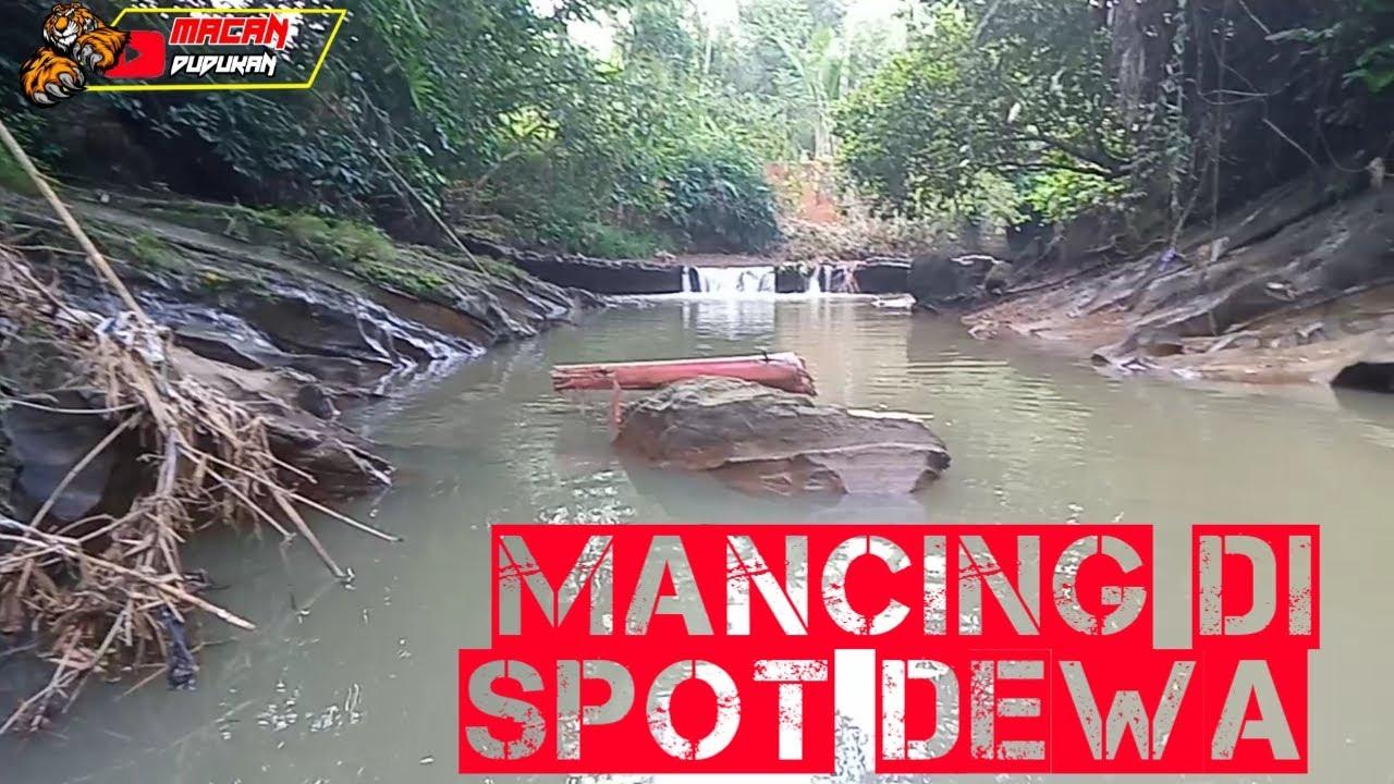 MANCING IKAN DI SPOT DEWA , automatically released - YouTube