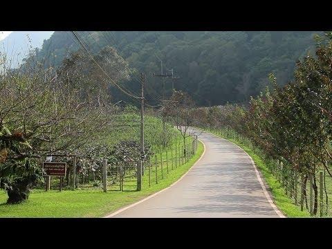 เส้นทางรอบสถานีเกษตรหลวงอ่างขาง