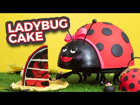 Ladybug CAKE!   Red & Black Marble Cake   How To Cake It